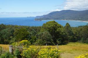 В Австралии и Новой Зеландии откроют границы для туристов